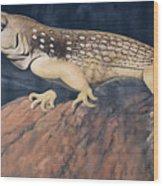 Desert Iguana Mural Wood Print