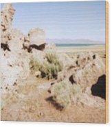Desert Lake Wood Print