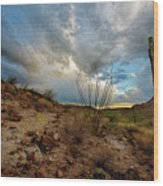 Desert Landscape With Clouds Wood Print