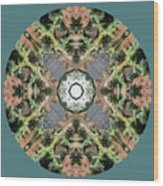 Desert Mandala Wood Print