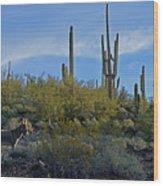 Desert Mule Wood Print