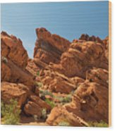 Desert Paradise Wood Print