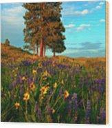 Desert Pines Meadow Wood Print