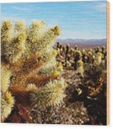 Desert Plants - Porcupine Cholla Wood Print