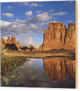 Desert Reflections Wood Print