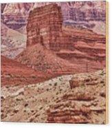 Desert Scene L Wood Print