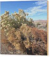 Desert Scrub Wood Print