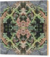 Desert Series 1 Of 4 Wood Print