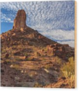 Desert Spire Wood Print
