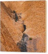 Desert Stain Wood Print
