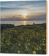 Desert Sunflowers Coastal Sunset 2 Wood Print
