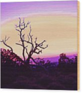 Desert Sunset With Silhouetted Tree 2 Wood Print