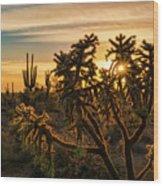 Desert Sunshine Shining Through  Wood Print