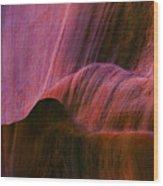 Desert Tapestry Wood Print