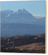 Desert To Mountains Wood Print