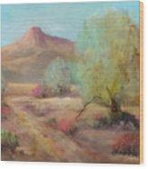 Desert Trails Wood Print