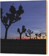 Desert Trip II Wood Print