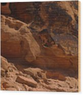 Desert Varnish Petroglyphs Valley Of Fire Wood Print