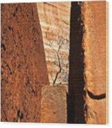Desert Vise Wood Print