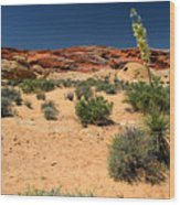 Desert Yucca In Bloom Valley Of Fire Wood Print