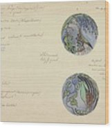 Design For A Brooch With Oriental Fruits, Carel Adolph Lion Cachet, C. 1874 - C. 1945 Wood Print