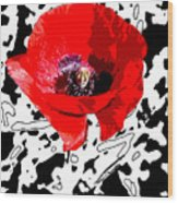 Design Poppy Wood Print