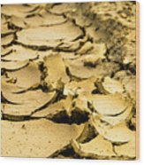 Designs In The Mud Wood Print