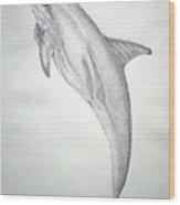 Desintigrating Porpoise Wood Print