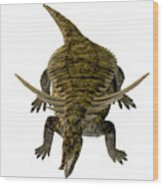 Desmatosuchus On White Wood Print