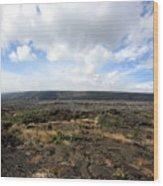 Desolate Lava Field Wood Print