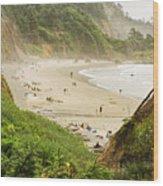 Destination Beach Wood Print
