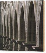 Detail From The Nave, Basilica Di San Lorenzo, Florence Wood Print