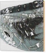 Detail Mayfly Wing Wood Print
