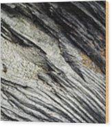 Detail Of Dry Broken Wood Wood Print