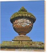Detail Of Funerary Urn. Wood Print