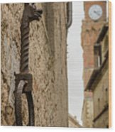 Detail Of Iron On A Wall Of Pienza, Tuscany, Italy Wood Print