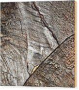 Detail Of Old Wood Sawn Wood Print