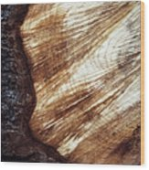 Detail Of Sawing Wood With Bark Wood Print