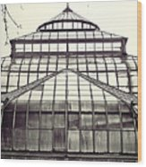 Detroit Belle Isle Conservatory Wood Print