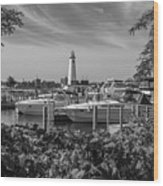 Detroit Lighthouse And Marina 3 Black And White  Wood Print