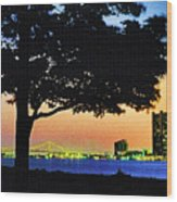 Detroit River View Wood Print