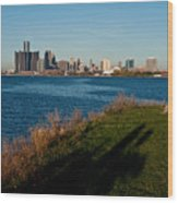 Detroit Skyline And Shadow Wood Print