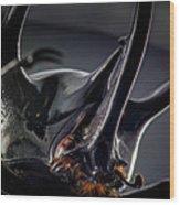 Devil Horns Macro Wood Print