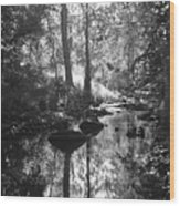 Devil Water In Sunlight Wood Print