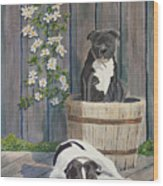 Devilish Duo At Rest Wood Print