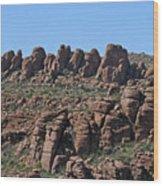 Devils Canyon Arizona Wood Print