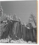 Devil's Postpile - Frozen Columns Of Lava Wood Print