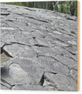 Devils Postpile - Nature And Science Wood Print by Christine Till