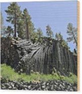 Devil's Postpile - Talk About Natural Wonders Wood Print