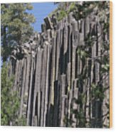 Devils Postpile National Monument - Mammoth Lakes - East California Wood Print by Christine Till